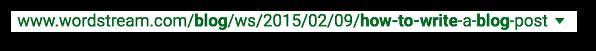 Google SERP URL Example